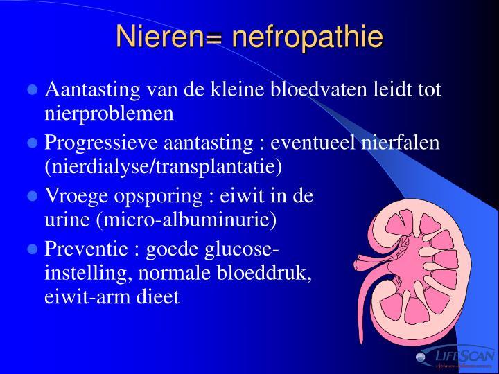 Nieren= nefropathie