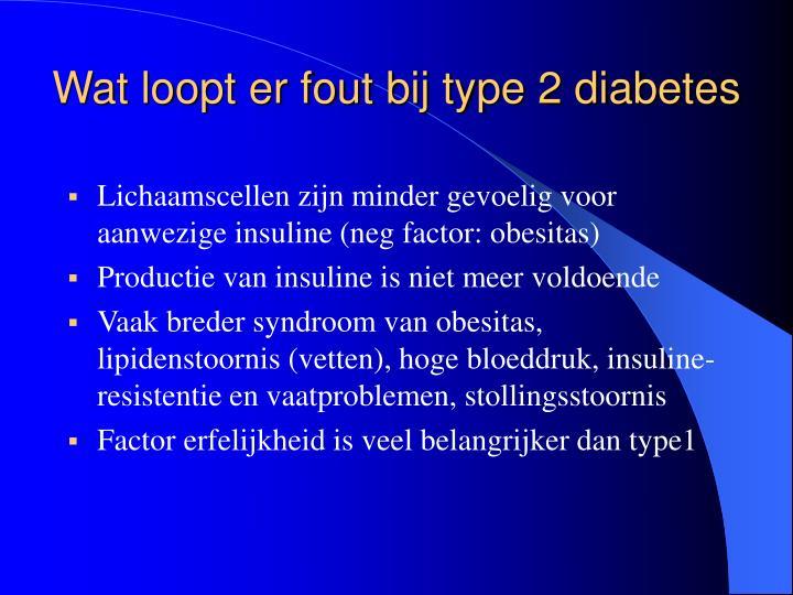 Wat loopt er fout bij type 2 diabetes