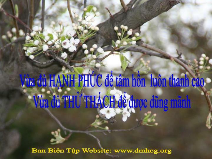 Va  HNH PHC  tm hn  lun thanh cao