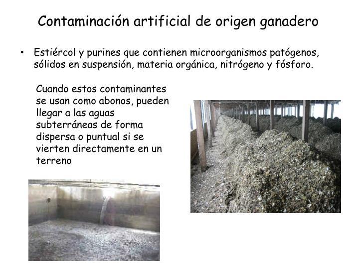 Contaminación artificial de origen ganadero