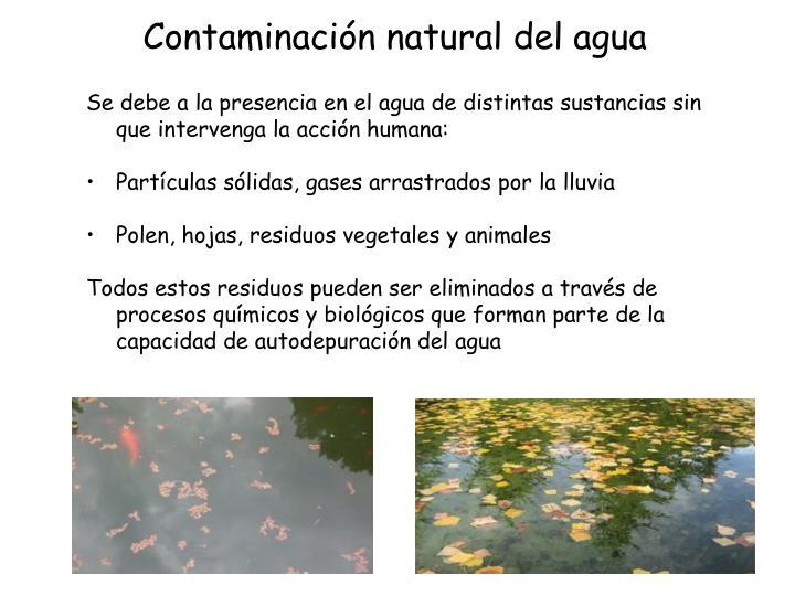 Contaminación natural del agua
