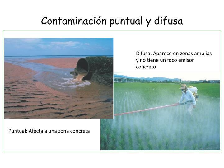 Contaminación puntual y difusa