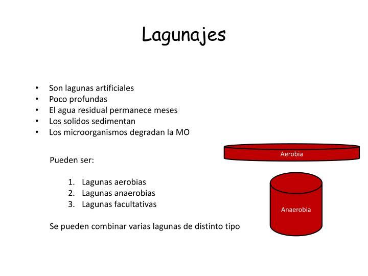Lagunajes