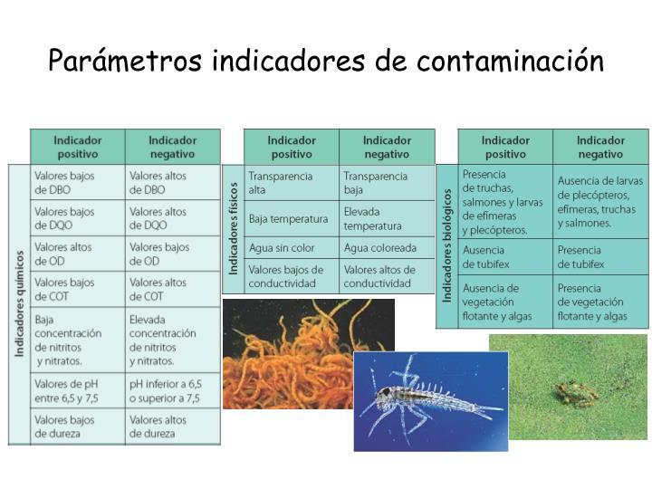 Parámetros indicadores de contaminación