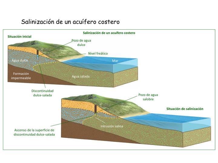 Salinización de un acuífero costero