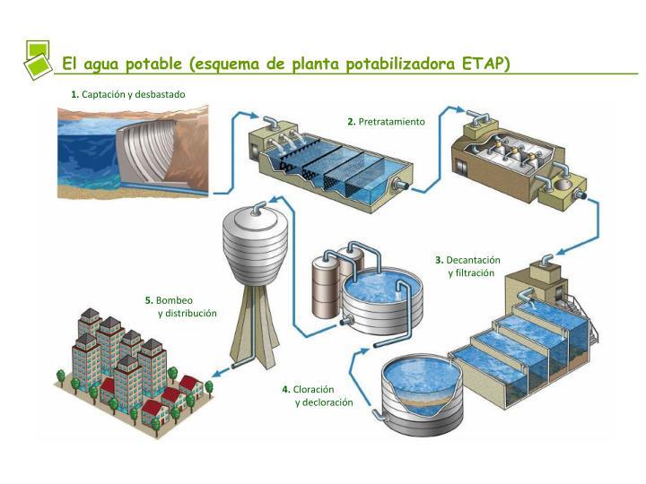El agua potable (esquema de planta potabilizadora ETAP)