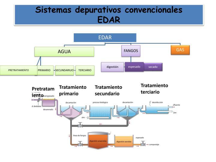 Sistemas depurativos