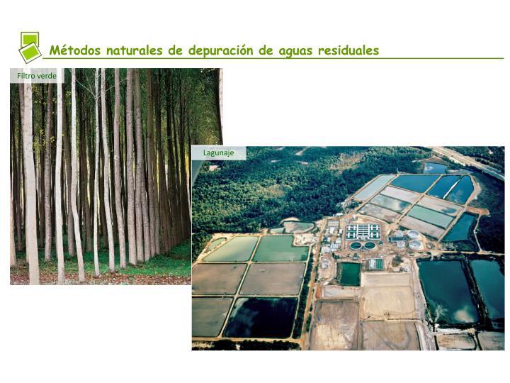 Métodos naturales de depuración de aguas residuales
