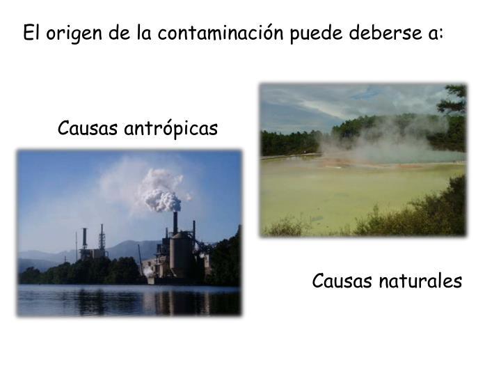 El origen de la contaminación puede deberse a:
