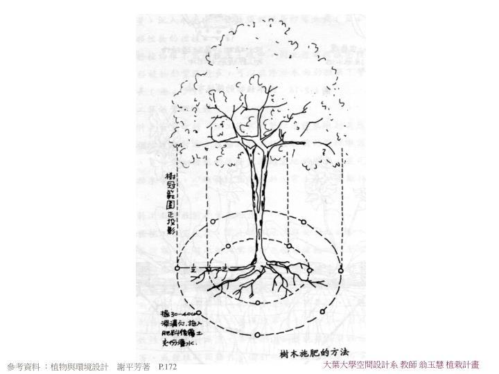 大葉大學空間設計系 教師 翁玉慧 植栽計畫