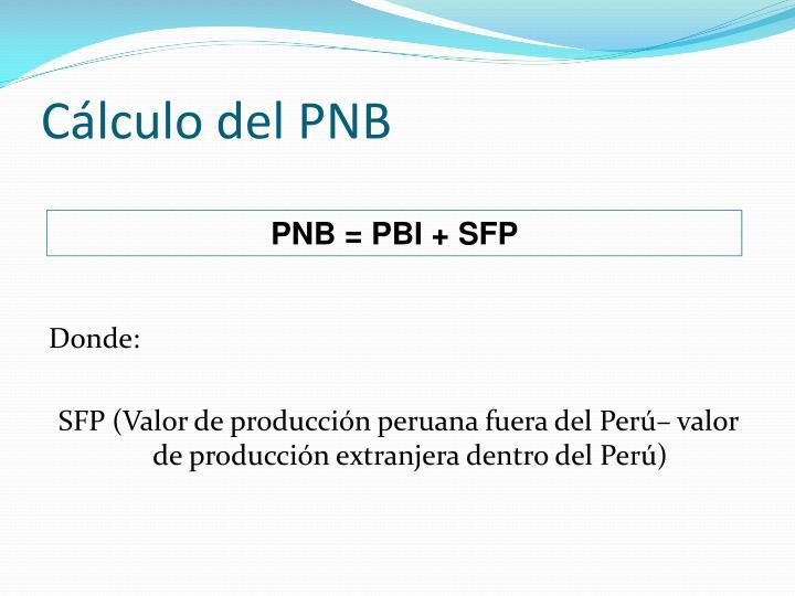 Cálculo del PNB