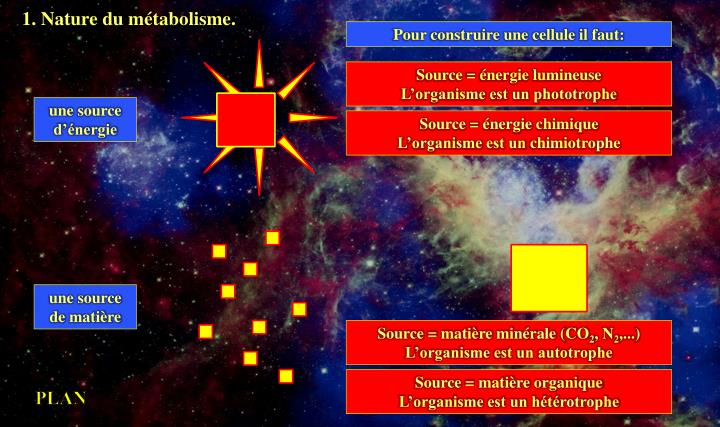 1. Nature du métabolisme.