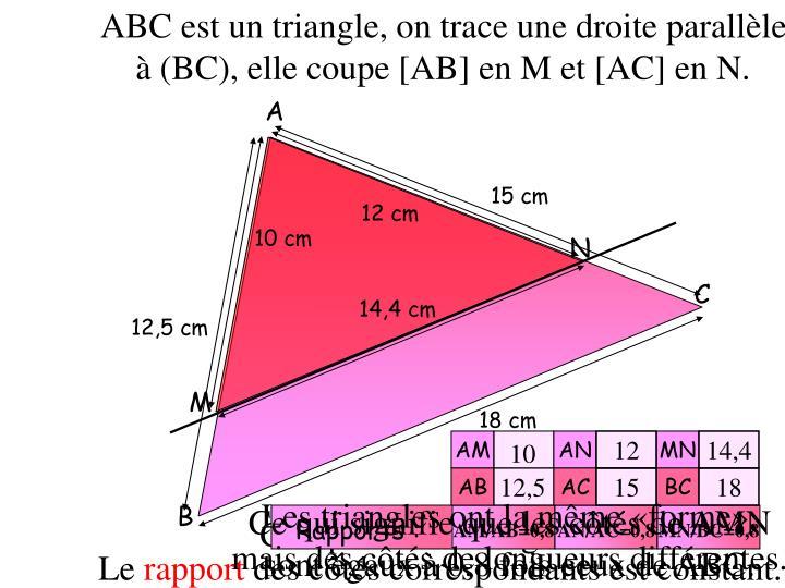 ABC est un triangle, on trace une droite parallèle à (BC), elle coupe [AB] en M et [AC] en N.