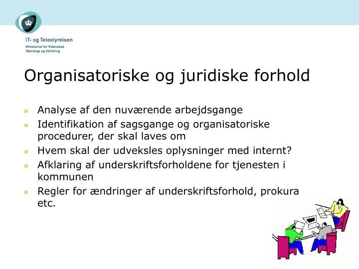 Organisatoriske og juridiske forhold