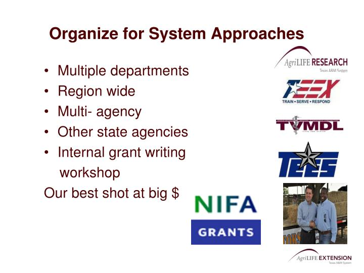 Organize for System Approaches