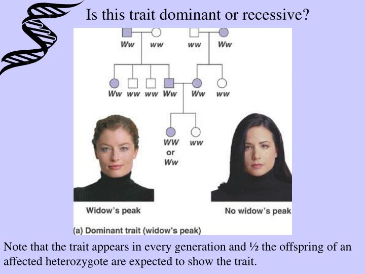 Is this trait dominant or recessive?