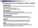 perspectives for viewing a work system2