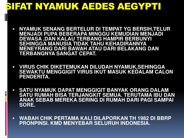 SIFAT NYAMUK AEDES AEGYPTI