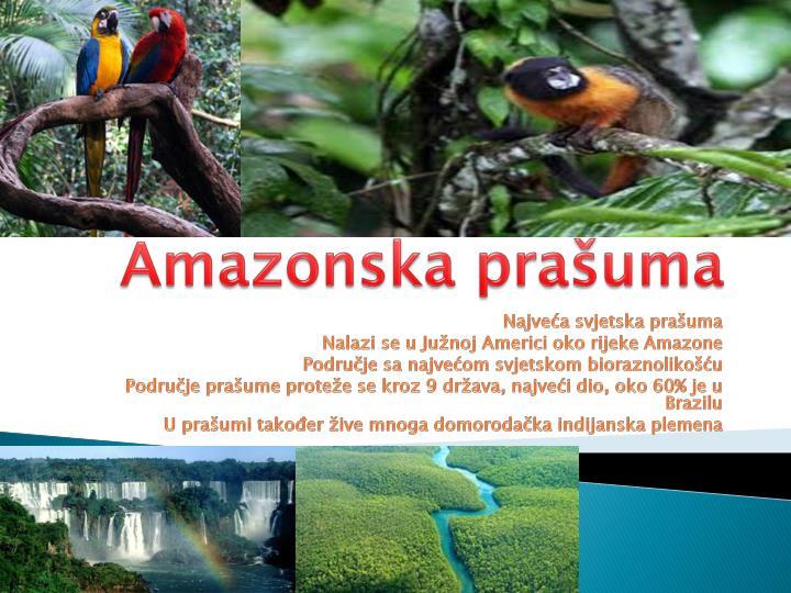 Amazonska prašuma