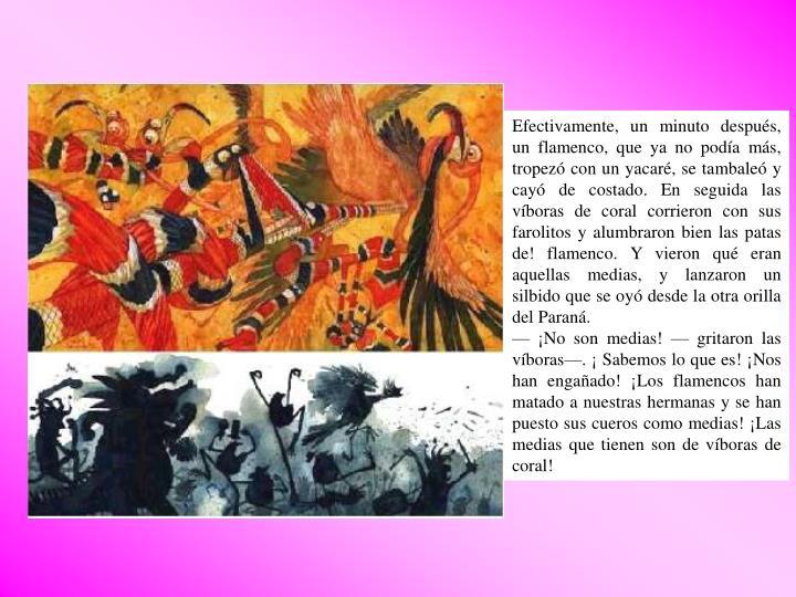 Efectivamente, un minuto después, un flamenco, que ya no podía más, tropezó con un yacaré, se tambaleó y cayó de costado. En seguida las víboras de coral corrieron con sus farolitos y alumbraron bien las patas de! flamenco. Y vieron qué eran aquellas medias, y lanzaron un silbido que se oyó desde la otra orilla del Paraná.