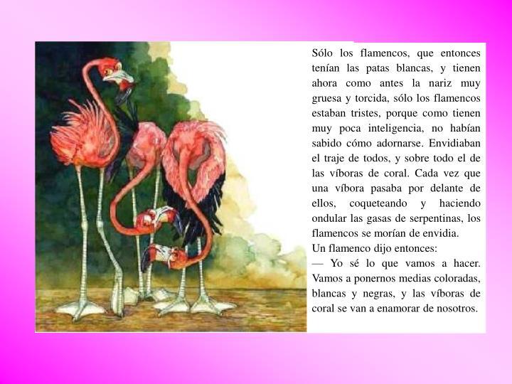 Sólo los flamencos, que entonces tenían las patas blancas, y tienen ahora como antes la nariz muy gruesa y torcida, sólo los flamencos estaban tristes, porque como tienen muy poca inteligencia, no habían sabido cómo adornarse. Envidiaban el traje de todos, y sobre todo el de las víboras de coral. Cada vez que una víbora pasaba por delante de ellos, coqueteando y haciendo ondular las gasas de serpentinas, los flamencos se morían de envidia.