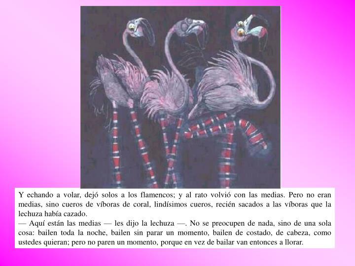 Y echando a volar, dejó solos a los flamencos; y al rato volvió con las medias. Pero no eran medias, sino cueros de víboras de coral, lindísimos cueros, recién sacados a las víboras que la lechuza había cazado.