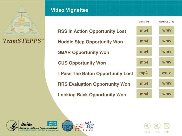 Video Vignettes