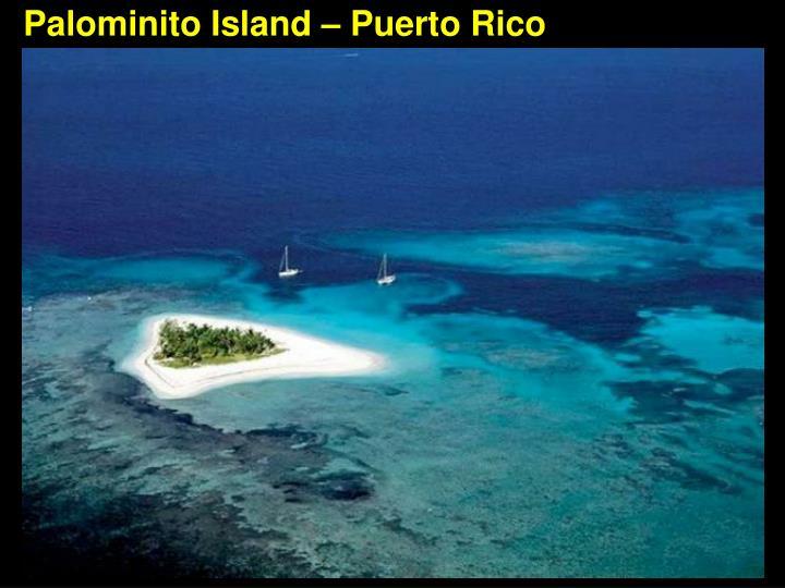 Palominito Island – Puerto Rico