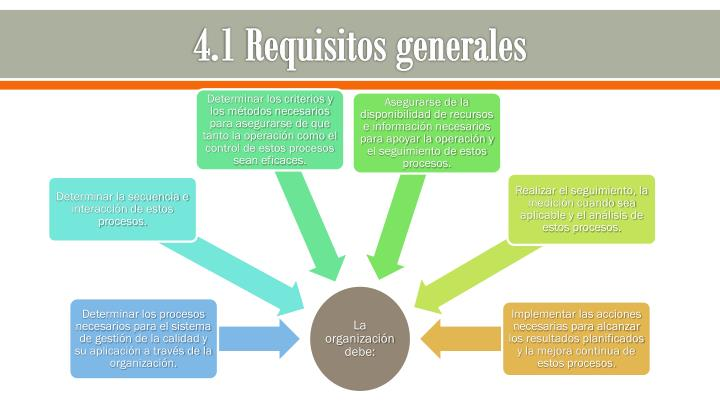 4.1 Requisitos generales