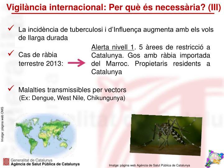 Vigilància internacional: Per què és necessària? (III)
