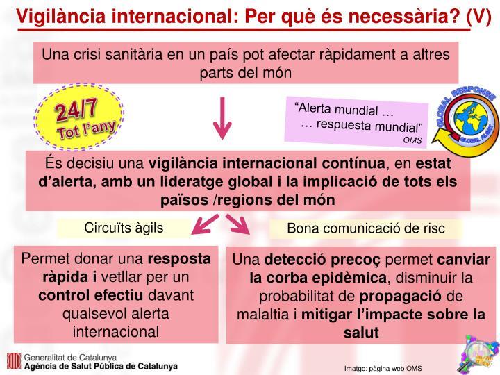 Vigilància internacional: Per què és necessària? (V)