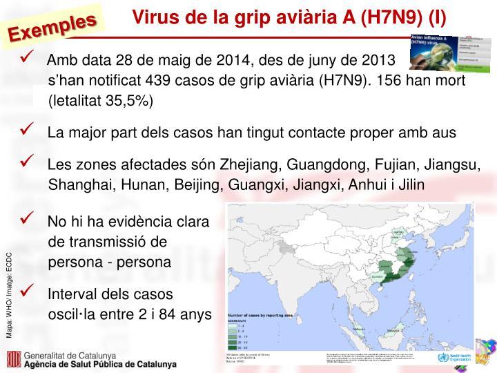 Virus de la grip aviària A (H7N9) (I)