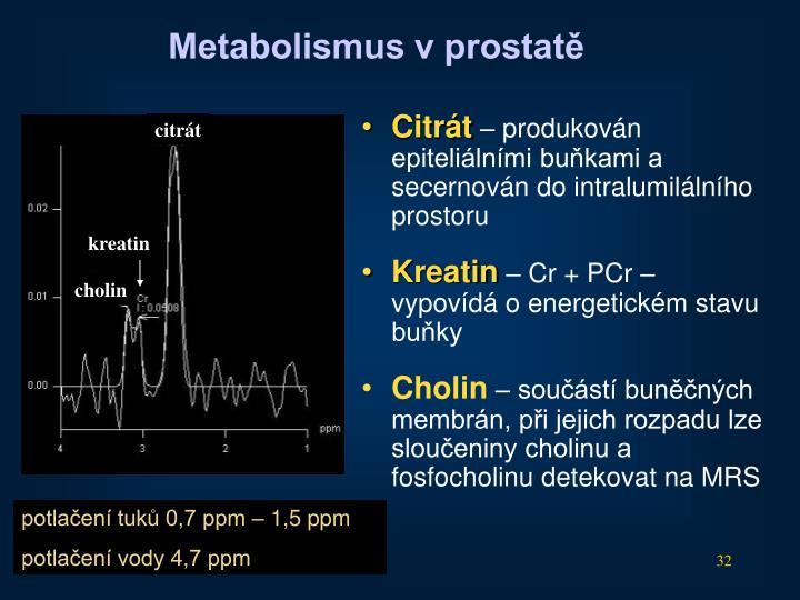 Metabolismus v prostatě