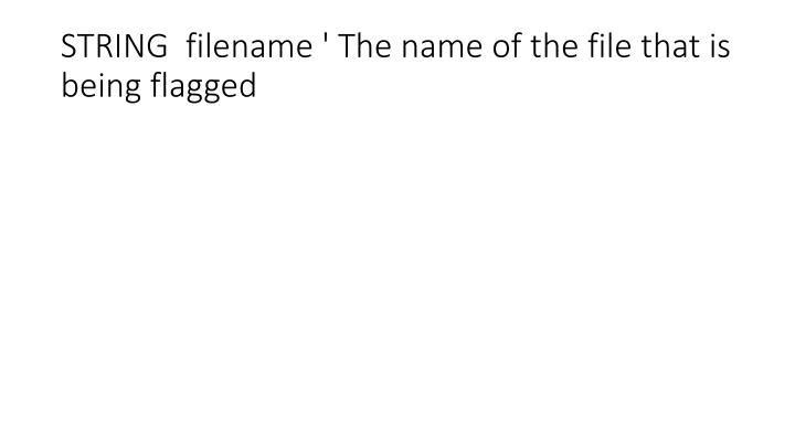 STRING  filename ' The name of the file that is being flagged