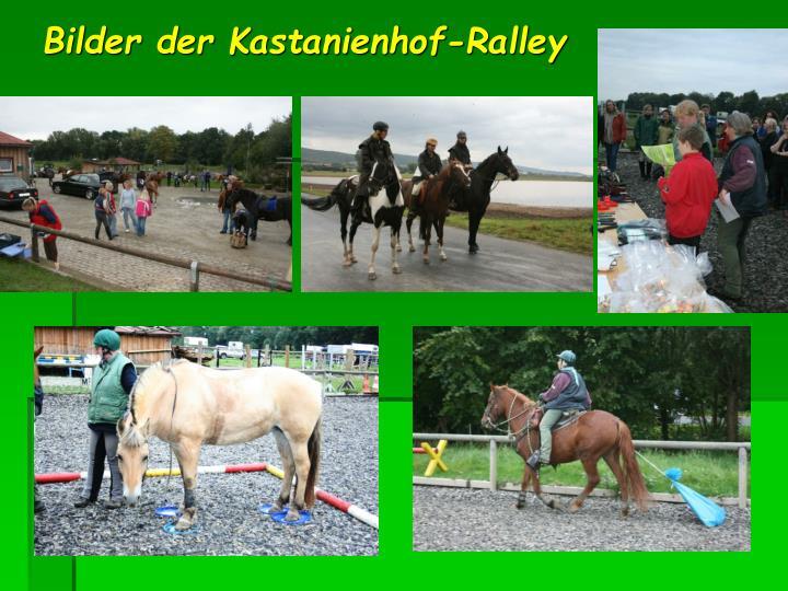 Bilder der Kastanienhof-Ralley