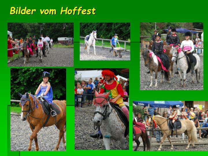 Bilder vom Hoffest
