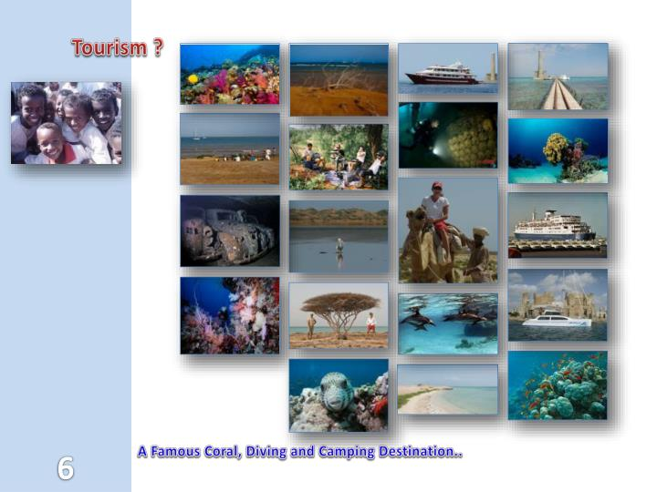 Tourism ?