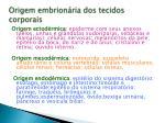 origem embrion ria dos tecidos corporais