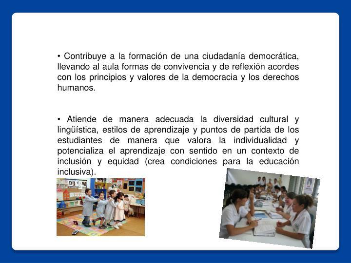 • Contribuye a la formación de una ciudadanía democrática, llevando al aula formas de convivencia y de reflexión acordes con los principios y valores de la democracia y los derechos humanos.