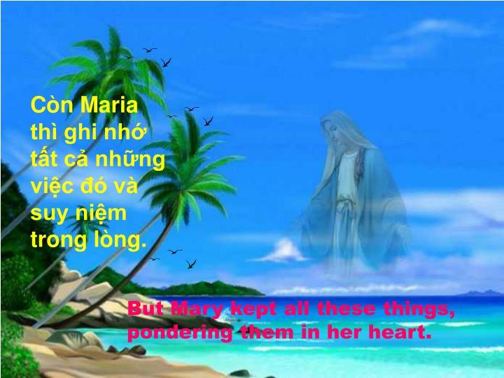 Còn Maria thì ghi nhớ tất cả những việc đó và suy niệm trong lòng.