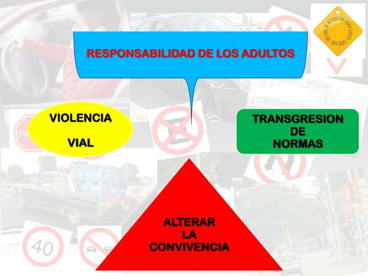 RESPONSABILIDAD DE LOS ADULTOS
