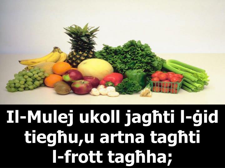 Il-Mulej