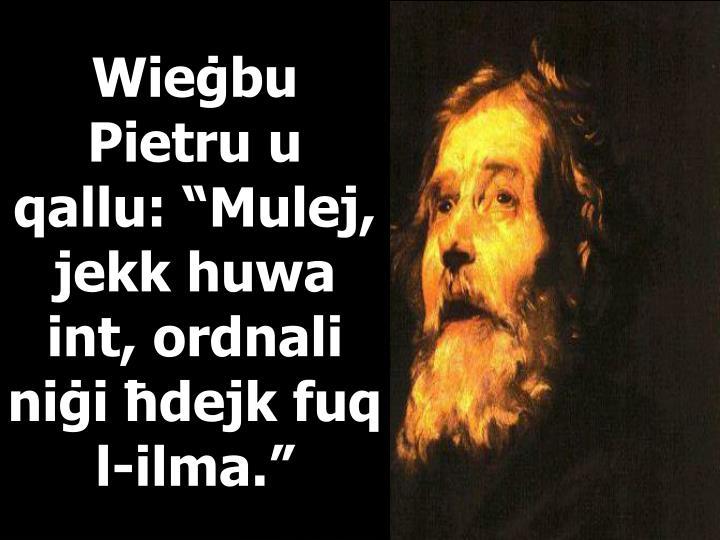 """Wieġbu Pietru u qallu: """"Mulej, jekk huwa int, ordnali niġi ħdejk fuq l-ilma."""""""