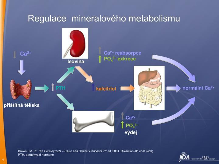 Regulace  mineralového metabolismu