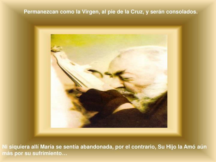 Permanezcan como la Virgen, al pie de la Cruz, y serán consolados.