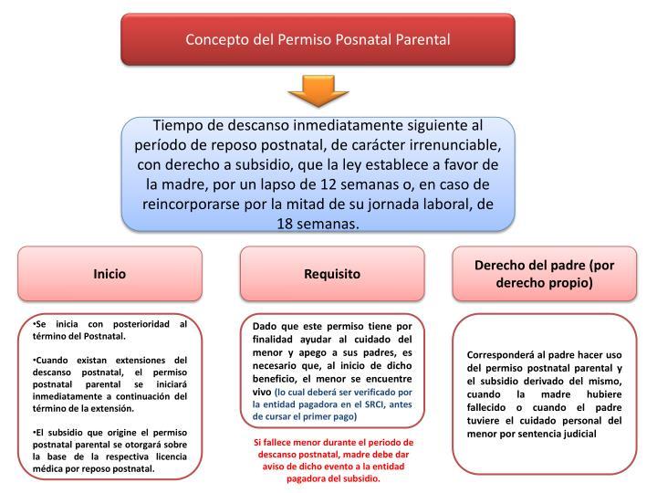 Concepto del Permiso Posnatal Parental