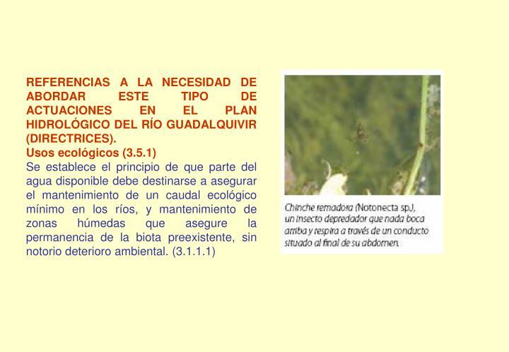 REFERENCIAS A LA NECESIDAD DE ABORDAR ESTE TIPO DE ACTUACIONES EN EL PLAN HIDROLÓGICO DEL RÍO GUADALQUIVIR (DIRECTRICES).