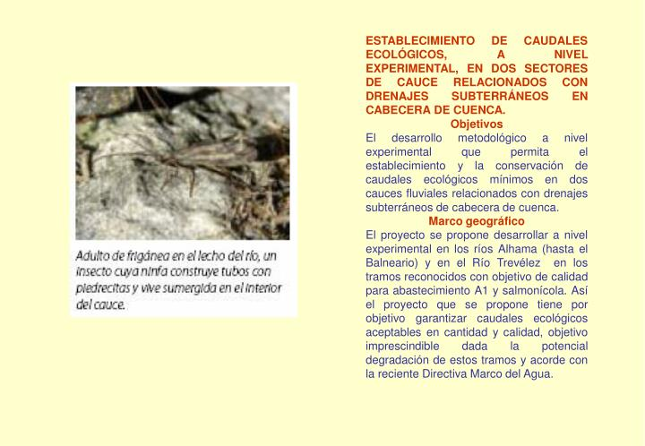 ESTABLECIMIENTO DE CAUDALES ECOLÓGICOS, A NIVEL EXPERIMENTAL, EN DOS SECTORES DE CAUCE RELACIONADOS CON DRENAJES SUBTERRÁNEOS EN CABECERA DE CUENCA.