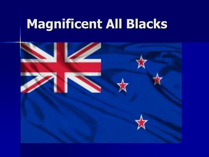Magnificent All Blacks