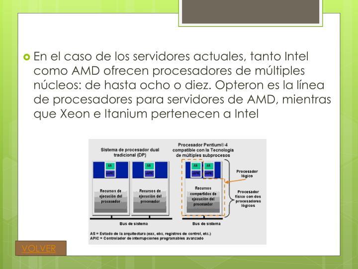 En el caso de los servidores actuales, tanto Intel como AMD ofrecen procesadores de múltiples núcleos: de hasta ocho o diez.